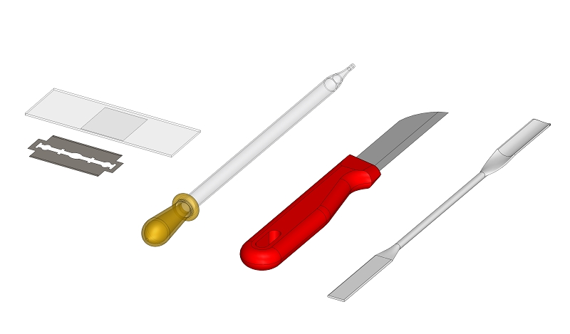 Herstellung eines Schnittpräparates